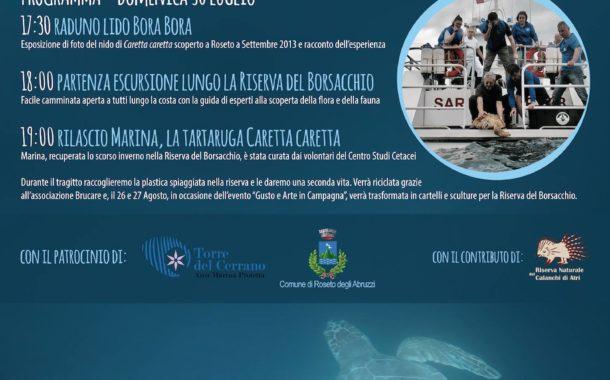 Roseto&Riserva del Borsacchio. Ecco un'escursione gratuita e rilascio di tartaruga marina