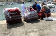 Sequestro della Guardia Costiera: rigettate in mare due tonnellate di cozze senza etichetta