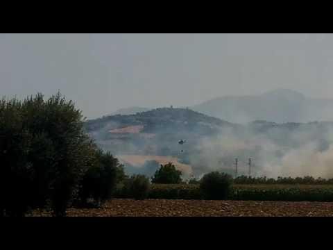 Abruzzo&incendi. Dopo Caramanico maxi-rogo nella boscaglia del fiume Vomano