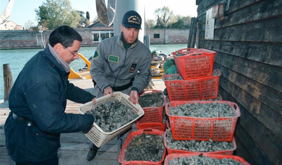 Batteri nelle vongole:a Mezzavalle scatta il divieto di pesca