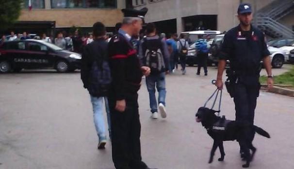 Val Vibrata. Spaccio di droghe davanti alle scuole: arrestato due pusher in pochi giorni