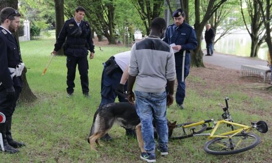 I cani antidroga scoprono il nascondiglio dello sballo: cittadini in rivolta