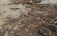 Pineto&maltempo. Scoppia la polemica per i rifiuti spiaggiati. Il Sindaco: