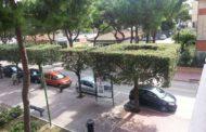 Giulianova. Manutezione straordinaria per la pinetina di Via Sauro