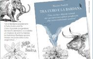 Marche. IX°Edizione: finissage della Land Art al Furlo