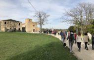 Sant'Omero.Complesso monumentale di