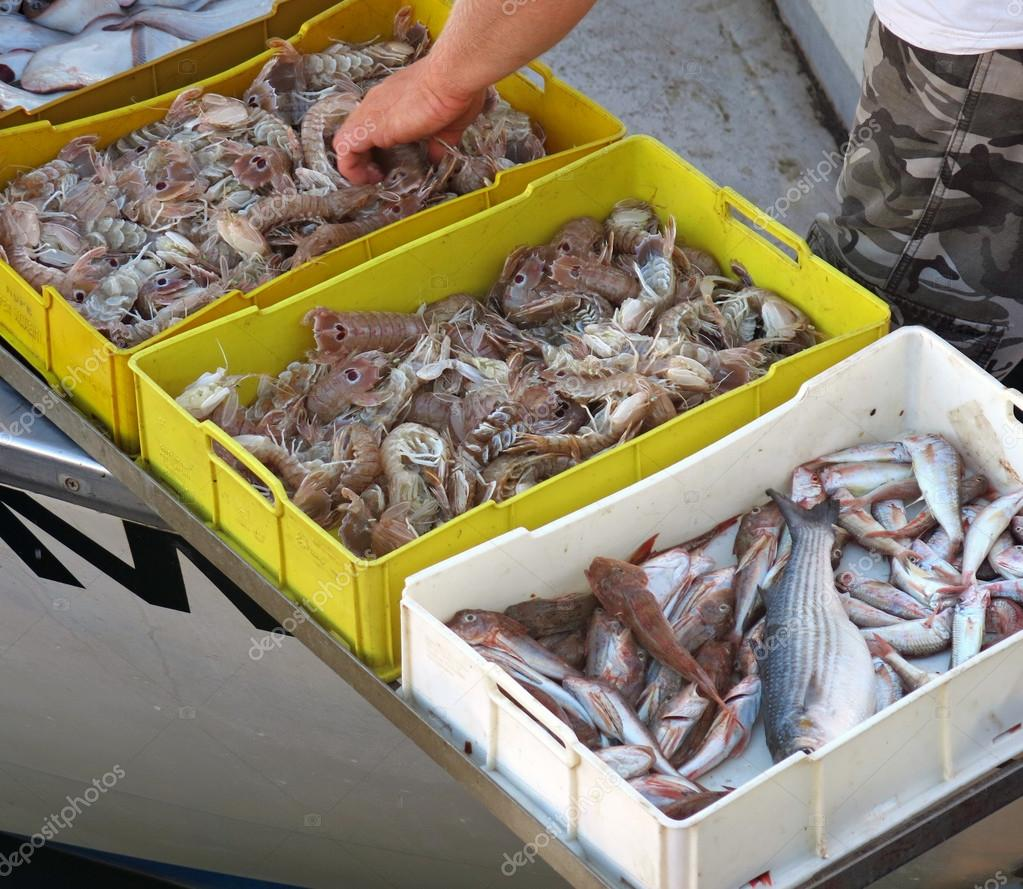 sito di incontri gratuito chiamato pesce molti pesci gay dating